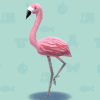 【ポケ森】なぜかフラミンゴを増殖したがるプレイヤー達のフラミンゴレイアウトがこちらwwww